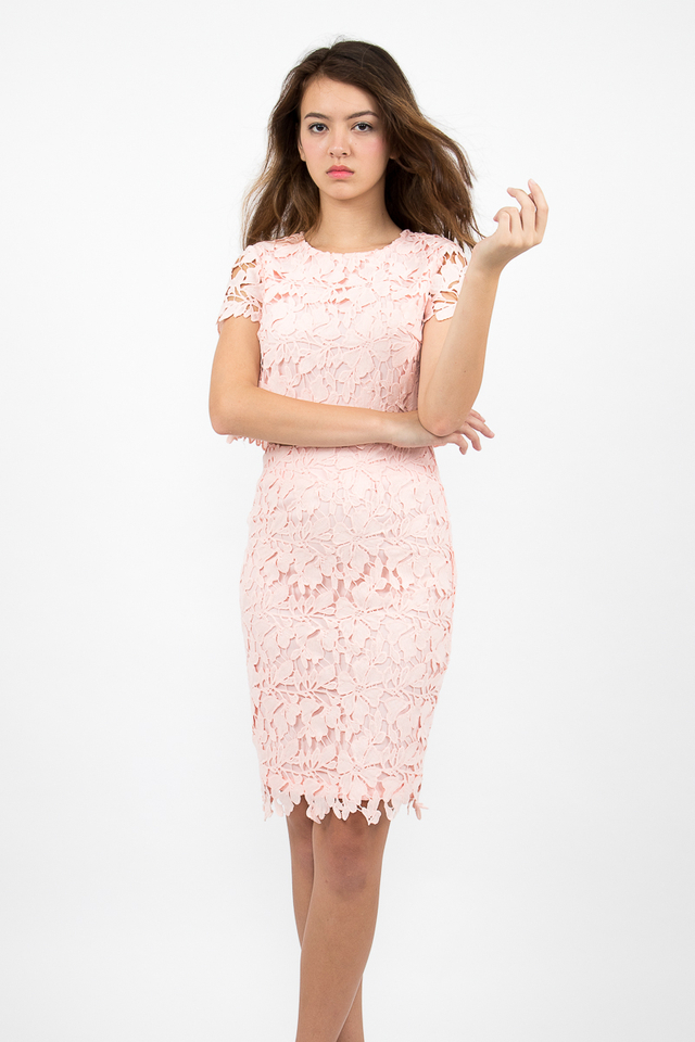 Lara Crochet Midi Pencil Skirt - Blush Pink